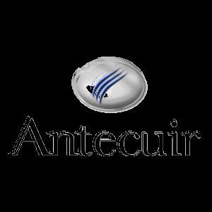 Antecuir_def