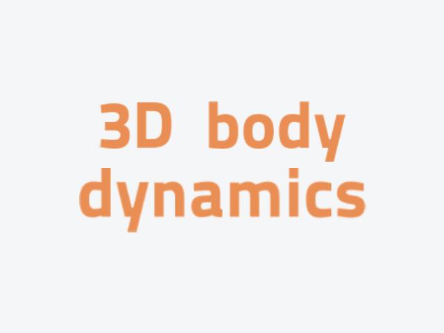 3D BODY DYNAMICS